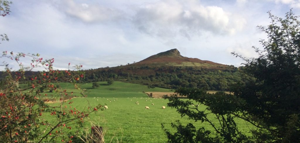 You'll get great views walking up Roseberry Topping