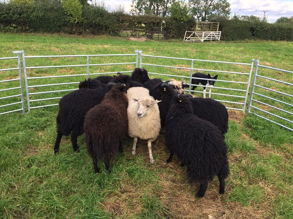 Rural Yorkshire retreat