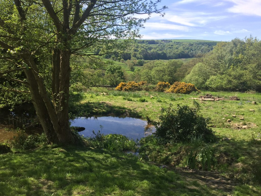 The peaceful Nidderdale setting of this luxury lodge