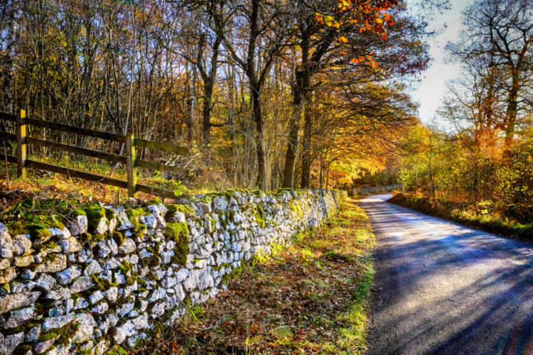 Autumn in the Yorkshire Dales