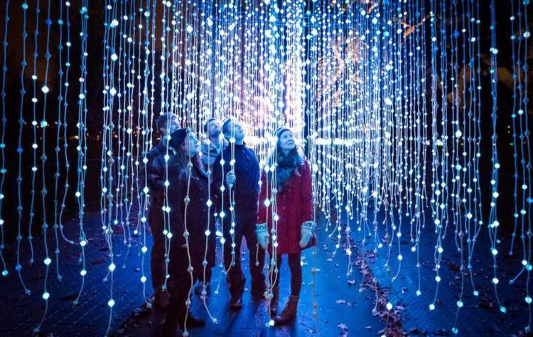 Blenheim Palace Illuminated Light Trail