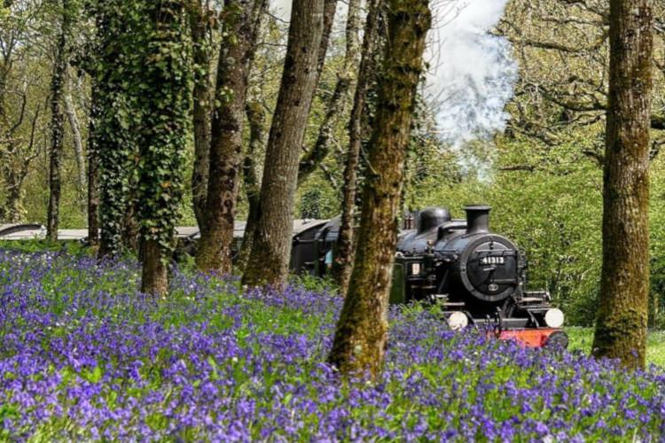 Train through woods with bluebells