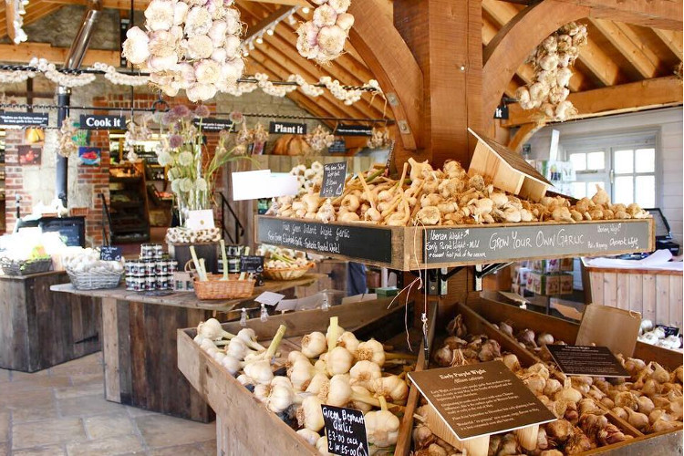 Browse the farm shop at the Garlic Farm