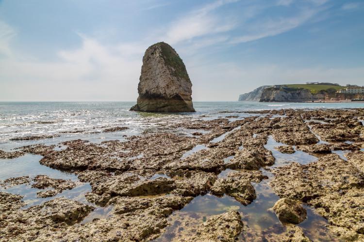 fossil beach iow