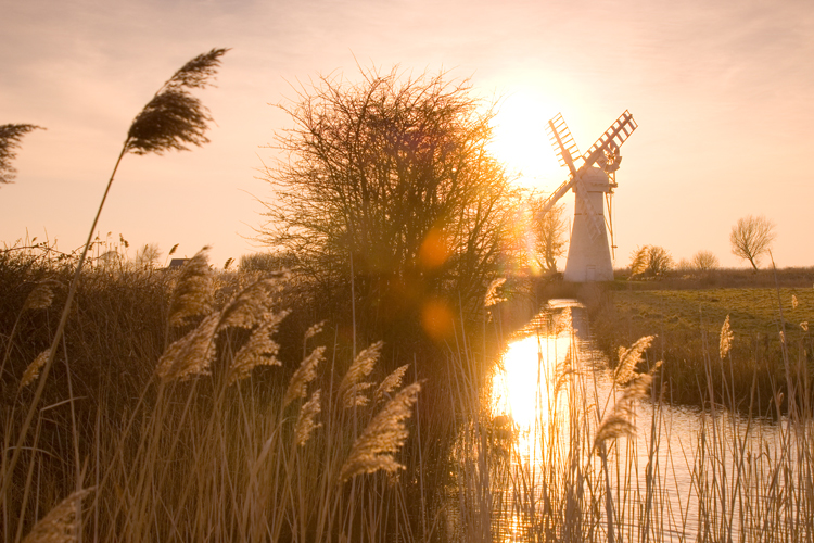 Norfolk Broads windmill and reeds