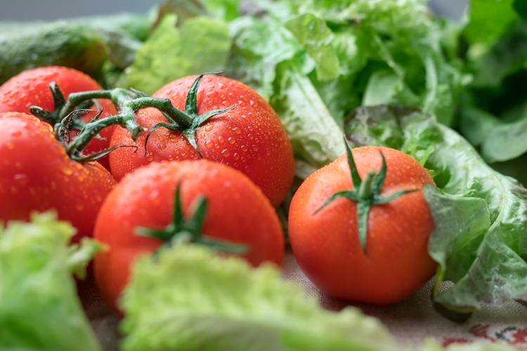 Fresh tomatoes and salad vegetables