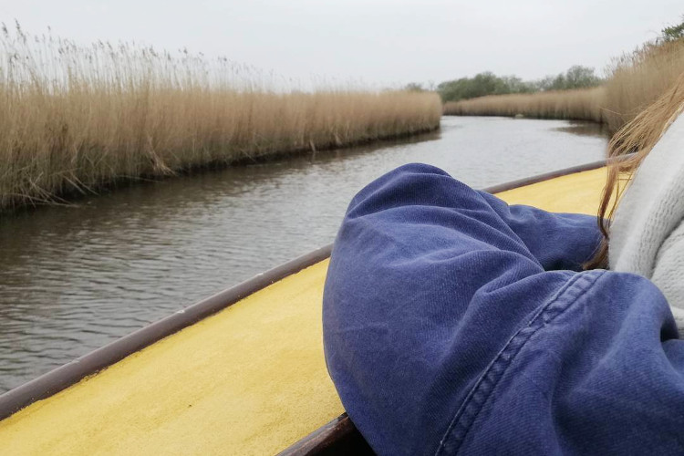 Ross' Wildlife Boat Trips in Norfolk