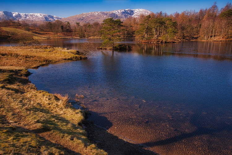 Tarns Hows