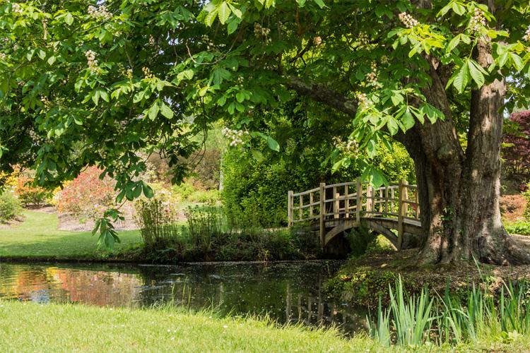 Exbury Gardens