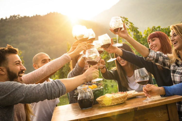 Visit a vineyard in the UK