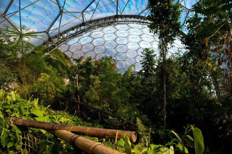 Visit the Eden Project