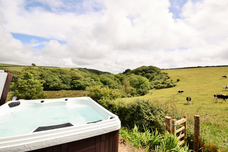 Dene Farmhouse, Morwenstow, a cottage in Cornwall with a hot tub