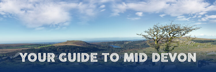 Your guide to Mid Devon