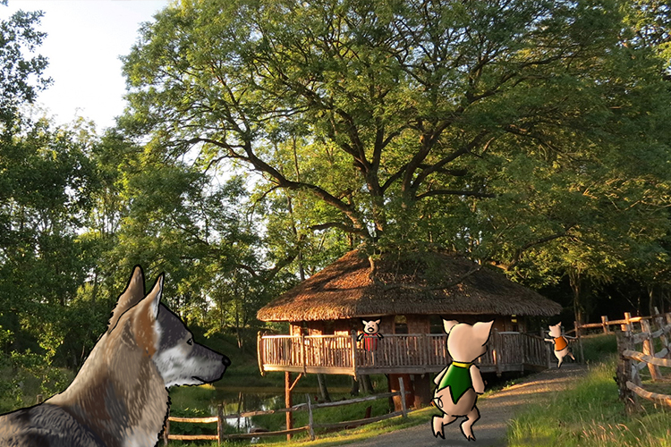 The Three Little Pigs and the big bad Wolf at Vivianna, Tenbury Wells