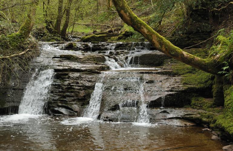 Talgarth Waterfalls