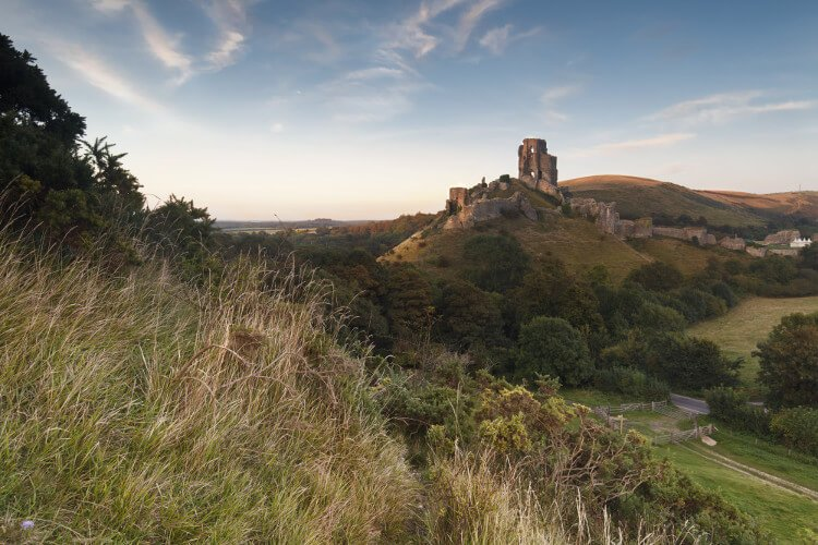 Corfe Castle dog-friendly Dorset holiday