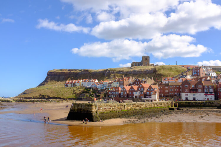 Whitby beach - dog friendly