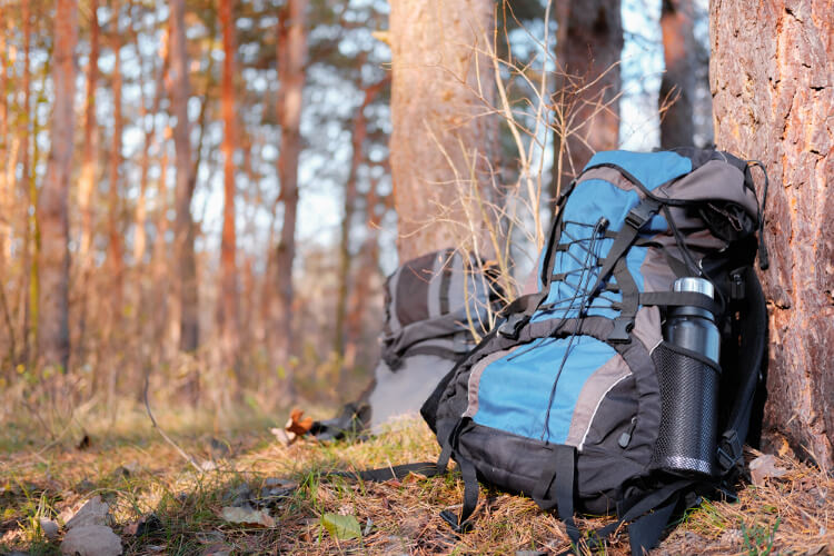 Two hiking rucksacks holding water bottles leaning against trees in the woods