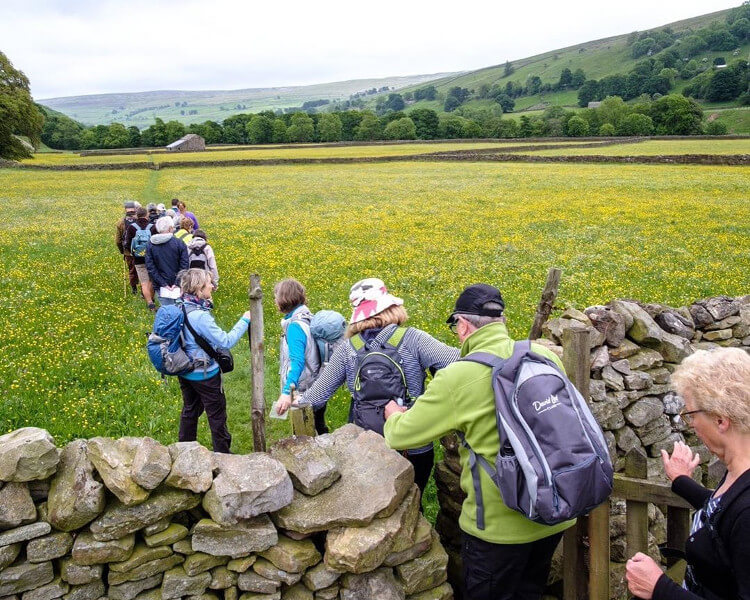 Guided walk through the countryside at the Swaledale Festival