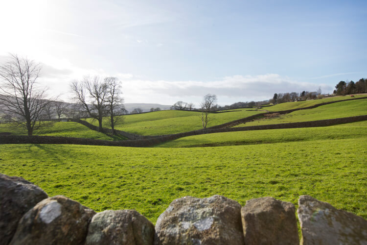 Green fields and valleys of Nidderdale, Yorkshire Dales