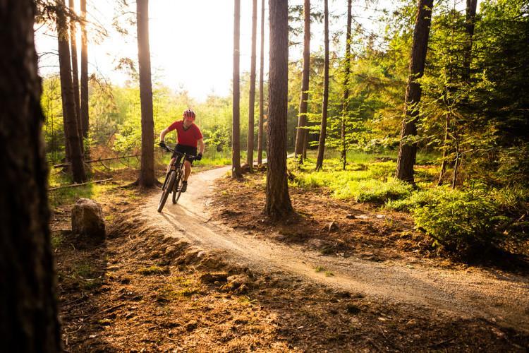 Cycling in Yorkshire - mountain biking