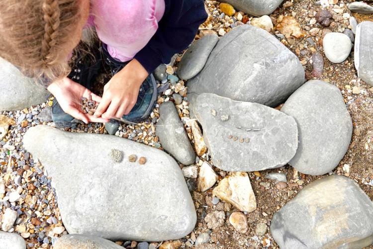 Hunting for treasure on the beach