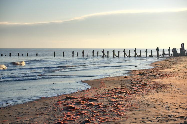 Best beaches in Yorkshire - Spurn Point