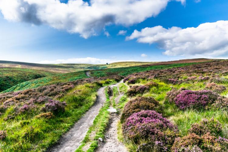 Discover the best Haworth walks