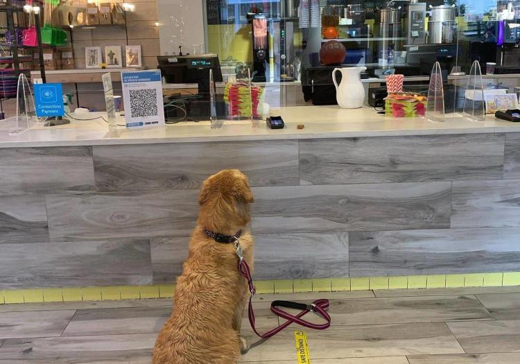 Well's Beach Cafe
