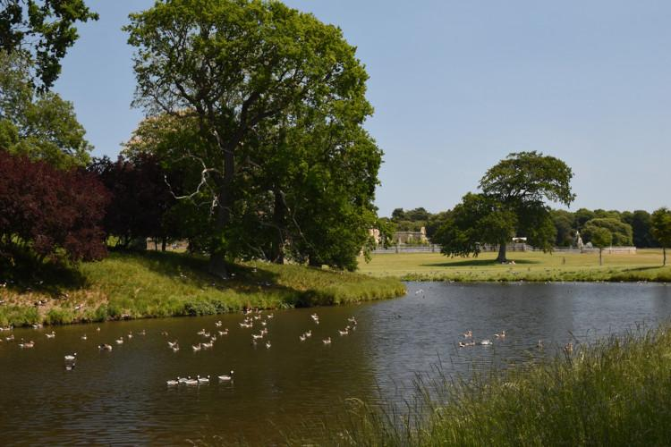 Pretty Villages - Holkham