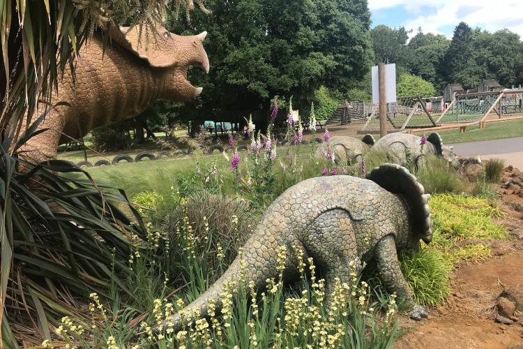 Norfolk theme park - things to do with kids in Norfolk