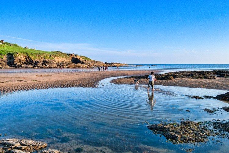 A dog-friendly beach in Cornwall