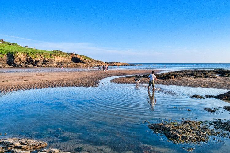 Dog walks on Bovisand Bay, Devon